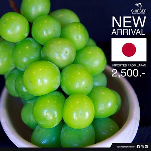 日本産のマスカット