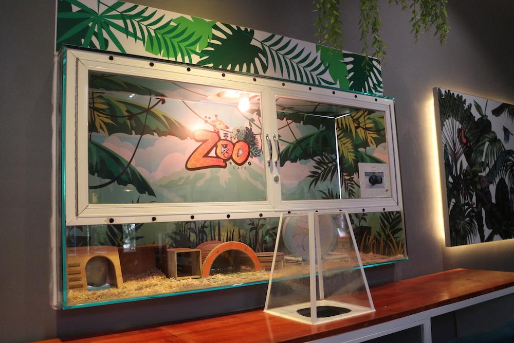 zoo_18